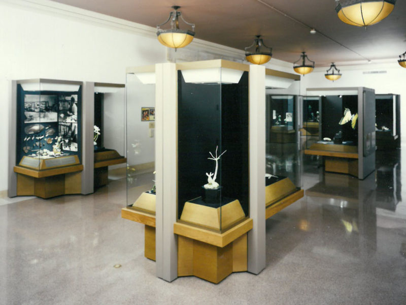 Buffalo Museum of Science: Changing Exhibition Galleries